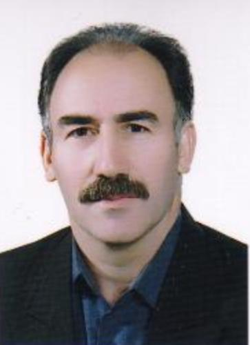 Hossein Karimi Moonaghi: PhD, MMedEd, MSc.N, RN