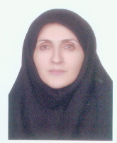 Naeimeh Seyed-Fatemi, PhD